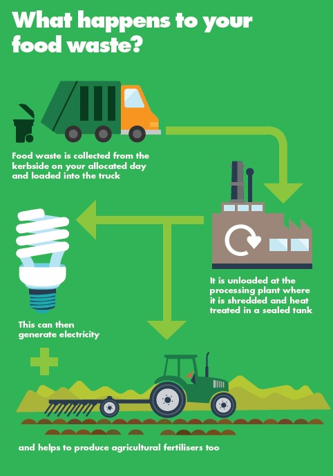 What happens to food waste?